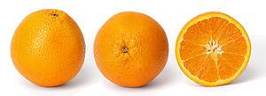 Orange and cross section edit.jpg