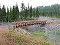 Orsa Björnpark 2009, Träbro - panoramio.jpg