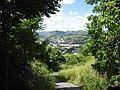 Otra vista del Pueblo de Cayey - panoramio.jpg