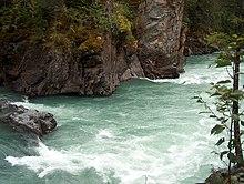 River Ecosystem Wikipedia