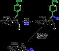 Oxidative tathering.png