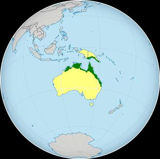 Coastal taipan - Image: Oxyuranus scutellatus range