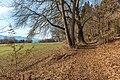 Pörtschach Winklern Quellweg Wanderweg 09012020 7993.jpg