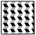 PSM V54 D326 Optical illusion image used in psychological tests.png