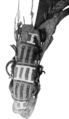 PSM V63 D496 Side view of an arapaho bag.png