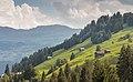 Panixersee (Lag da Pigniu) boven Andiast. (actm) 30.jpg