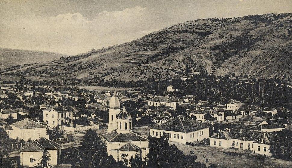 Panorama Dimitrovgrada