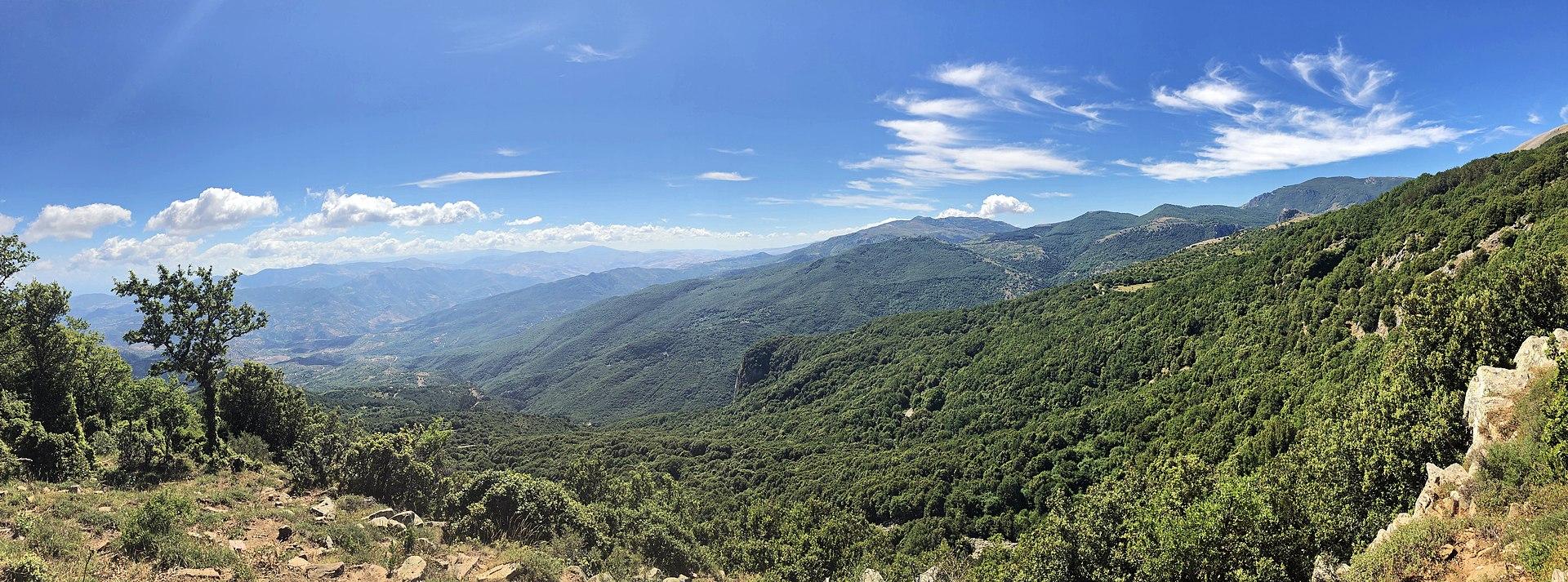 Panorama dal sentiero degli agrifogli.jpg