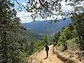 Paro Taktsang, Taktsang Palphug Monastery, Tiger's Nest -views from the trekking path- during LGFC - Bhutan 2019 (304).jpg