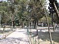 Parque Maria Luisa 01.jpg
