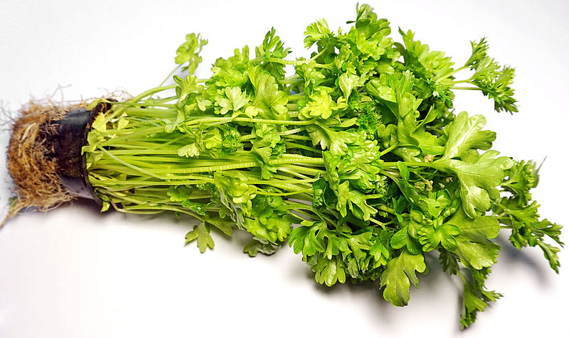 Íomhá:Parsley 2.jpg