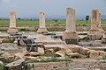 Pasargadae ruins.jpg