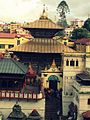 Pashupatinath Temple in Nepal.jpg