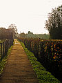 Path from Pilgrims Way to Eccles.jpg