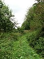 Path leading north to Boathouse Carr - geograph.org.uk - 558355.jpg