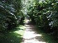 Pathway - geograph.org.uk - 1375984.jpg
