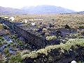 Peat-bog-Ireland.jpg