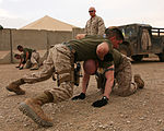Personal Security Detail Marines Stay Sharp With Regular Training DVIDS263230.jpg