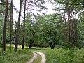 Petushinsky District, Vladimir Oblast, Russia - panoramio.jpg