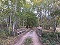 Pfeffergraben westlich von Rieben Brücke.jpg