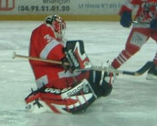Philippe DeRouville Canadian ice hockey player