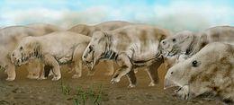 تعريف الديناصورات 260px-Placerias_BW.j