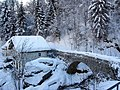 Ponte rusa.JPG