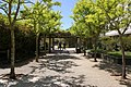 Porter College, UCSC.jpg