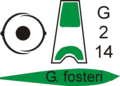 Poster galanthus fosteri.png