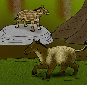 Propalaeotherium - Eurohippus parvulus (on rock) and P. hassiacum (in water).