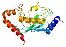 Protein UBE2B PDB 1jas.png