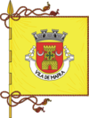 Flag of Mafra