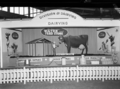 Queensland State Archives 1788 Department of Agriculture and Stock displays at the annual exhibition of the Royal National Association Brisbane August 1955.png