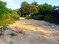 Quicksands - panoramio.jpg