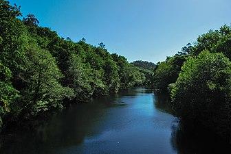 Río Lérez 2.jpg
