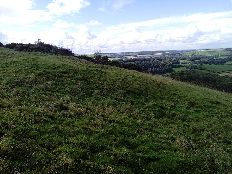 File:Ramsdean Down barrows 04.jpg