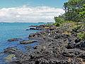 Rangitoto Island.jpg