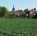 Rapsfeld bei Ludwag - panoramio.jpg