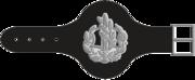 Rasar-Yekhidati-2-1-1.png