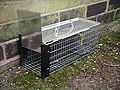 Rat cage trap 3y08.JPG