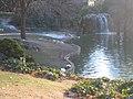 Real Parque del Buen Retiro (2807390170).jpg