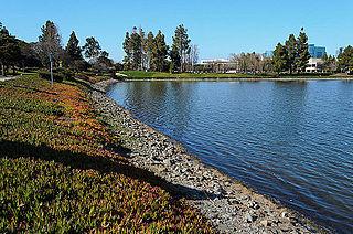 Redwood Shores, California Place in California, United States