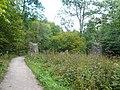 Remains of Aqueduct Pillars - geograph.org.uk - 559446.jpg
