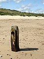 Remains of a wooden groyne - geograph.org.uk - 946846.jpg