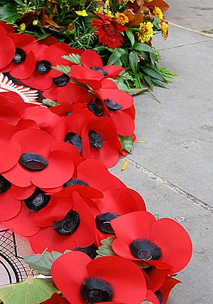 Poppy Factory - Image: Remembrance Poppies
