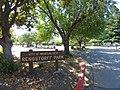 Rengstorff Park, Mountain View, California, north entrance sign, June 2019.jpg