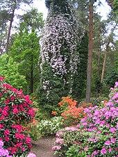 liste von rhododendron parkanlagen wikipedia. Black Bedroom Furniture Sets. Home Design Ideas
