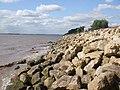 River Humber Shoreline - geograph.org.uk - 1462060.jpg