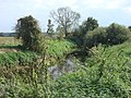 River Stour - geograph.org.uk - 979443.jpg