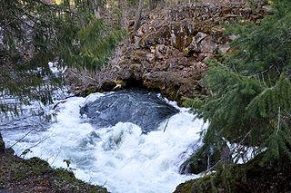 Rogue River (Oregon) river in Oregon, United States